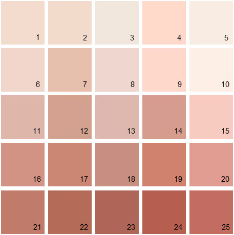 Benjamin Moore Red House Paint Colors Palette 03