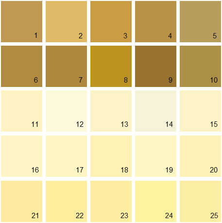 Benjamin Moore Yellow House Paint Colors Palette 06