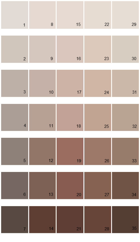 Sherwin Williams Fundamentally Neutral House Paint Colors Palette 02